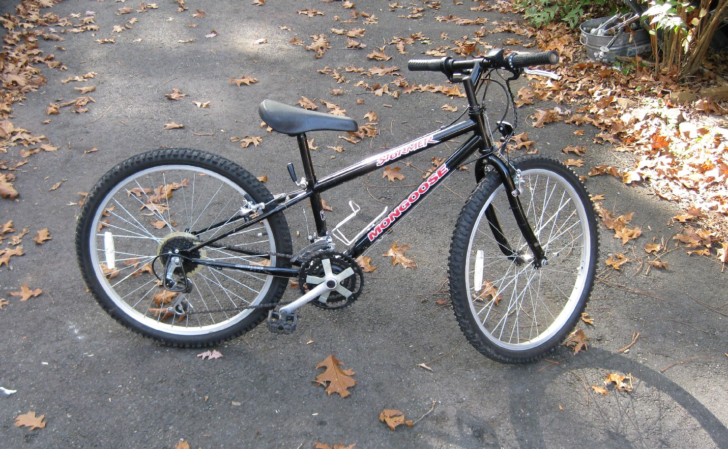 Mongoose Bike